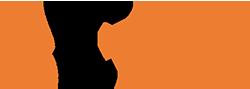 SOTIN Logo